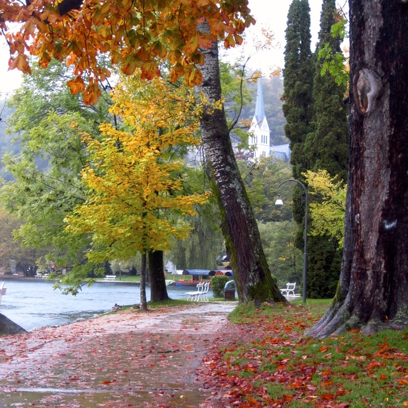 Lake Bled path