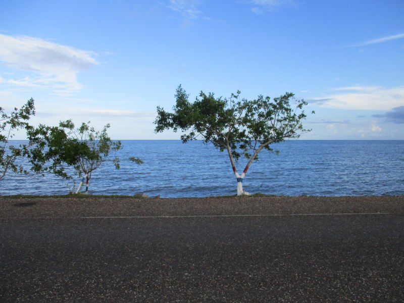 Caribbean and trees on the shore of Punta Gorda, Belize