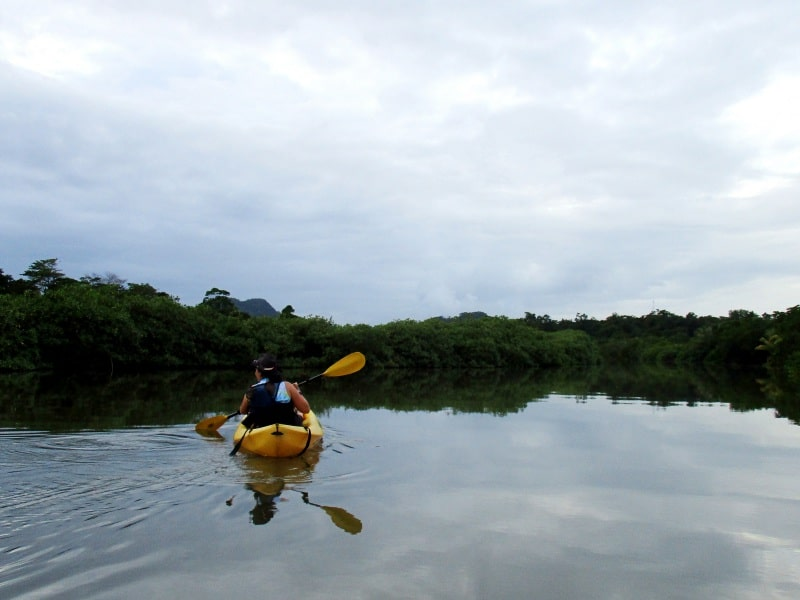 kayaking thru mangroves in Punta Gorda, Belize