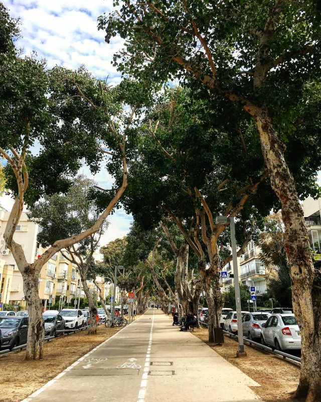 Tel Aviv Neighborhoods