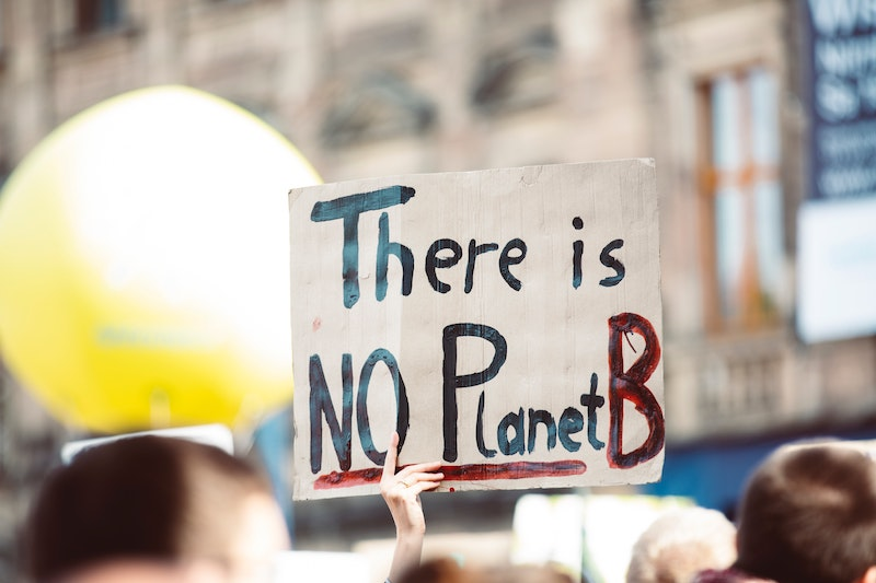 cardboard sign at a climate march that says there is no planet b
